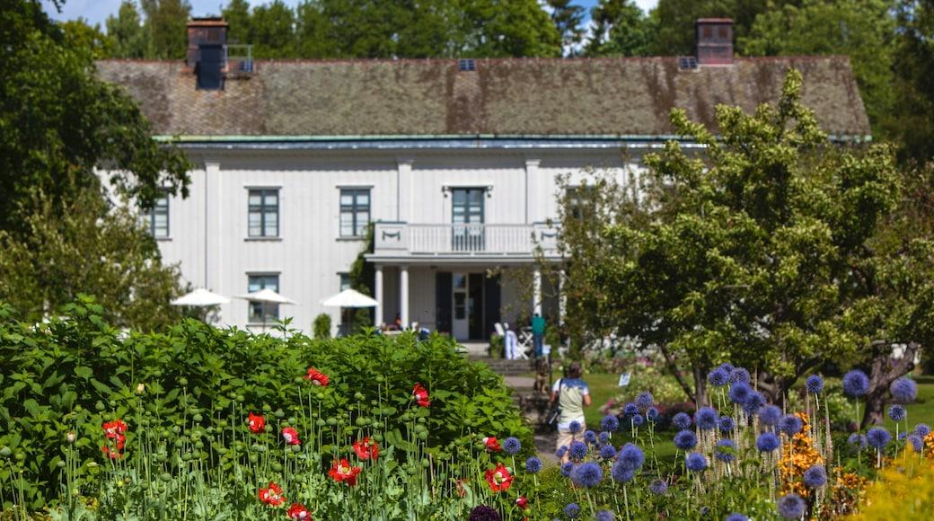 Karlstad mettant en vedette fleurs sauvages