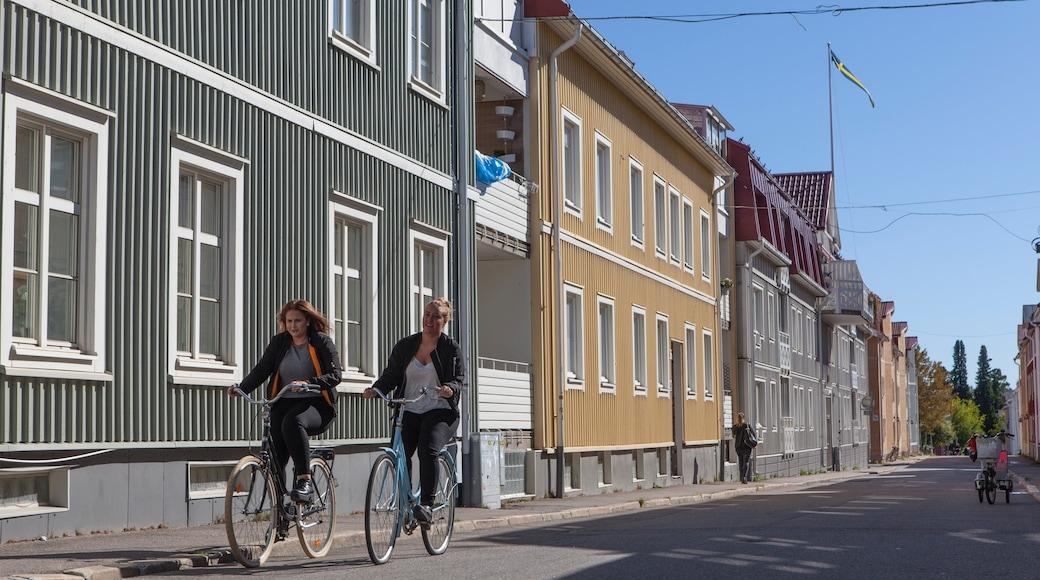 Pitea montrant cyclisme sur route aussi bien que couple
