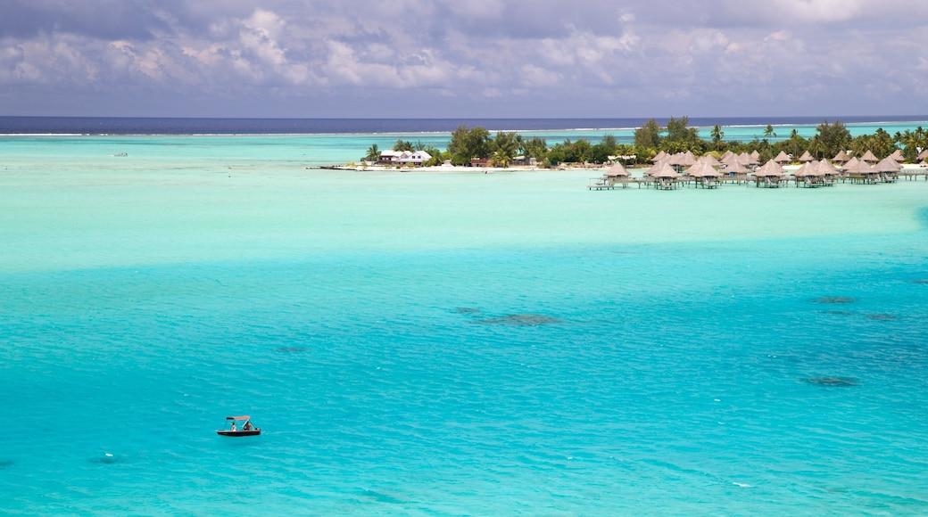 Bora Bora presenterar tropisk natur och kustutsikter