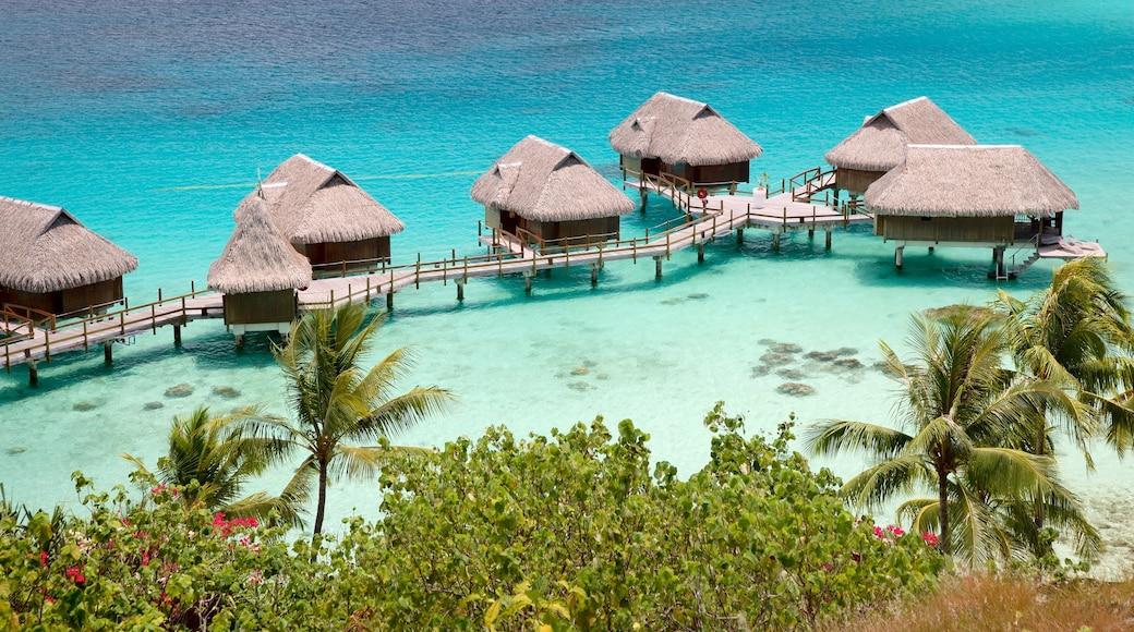 Sofitel Motu das einen tropische Szenerien und allgemeine Küstenansicht