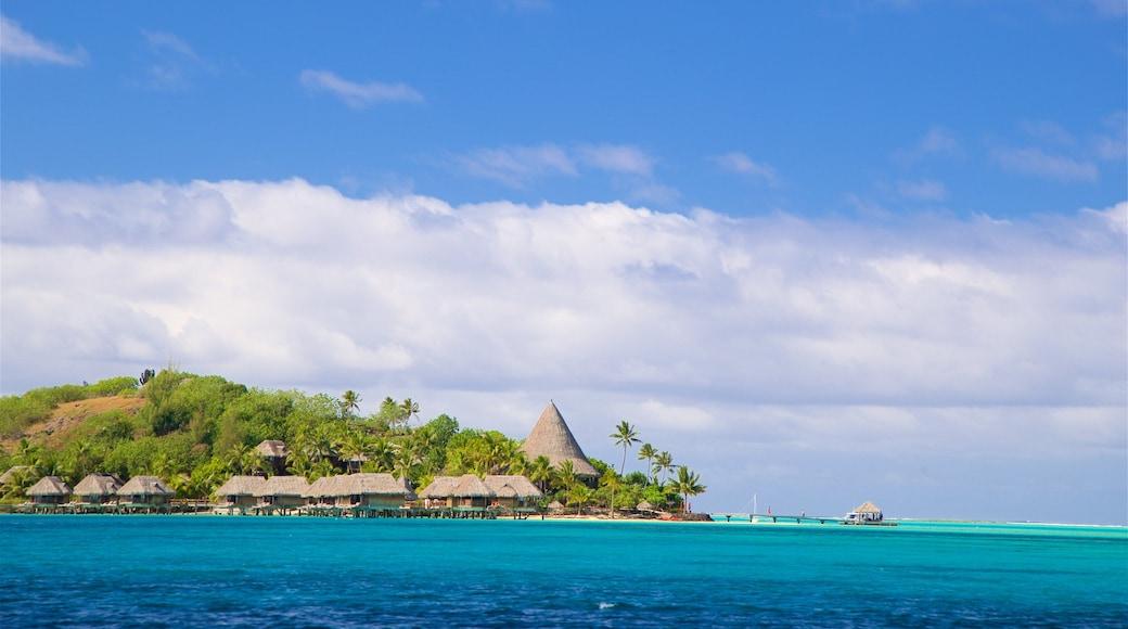 Sofitel Motu welches beinhaltet tropische Szenerien und allgemeine Küstenansicht