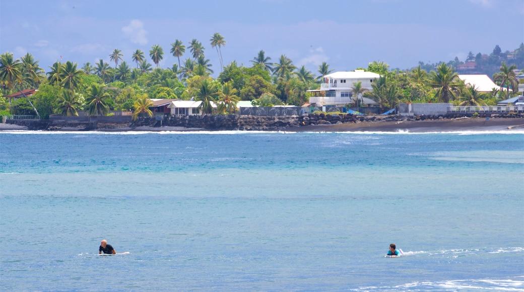 Museum of Tahiti featuring general coastal views, swimming and tropical scenes