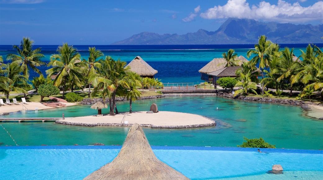 Tahiti showing tropical scenes and general coastal views