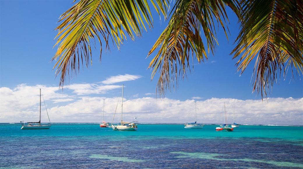 Moorea which includes general coastal views, tropical scenes and a bay or harbour