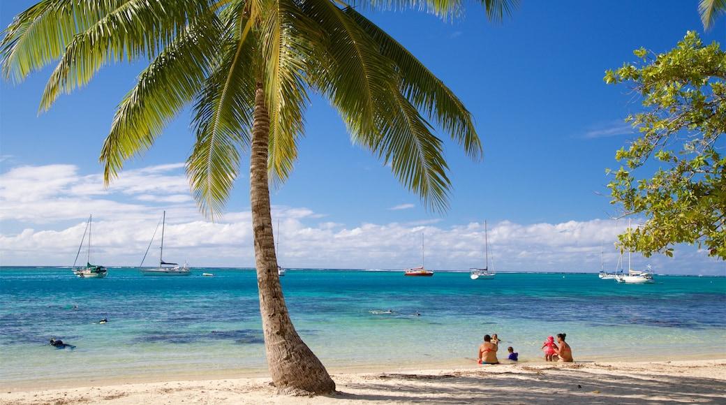 Moorea showing a beach, tropical scenes and general coastal views