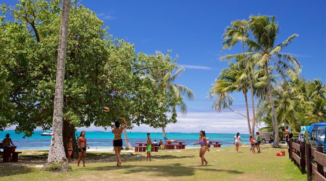 Moorea qui includes scènes tropicales, parc et vues littorales