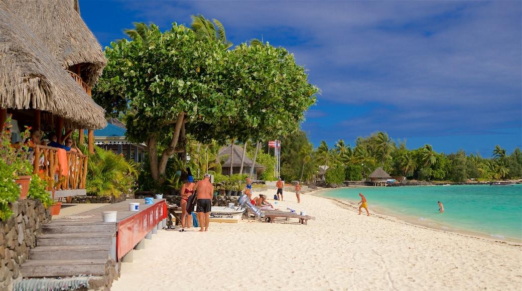 Matira Beach which includes general coastal views, tropical scenes and a sandy beach