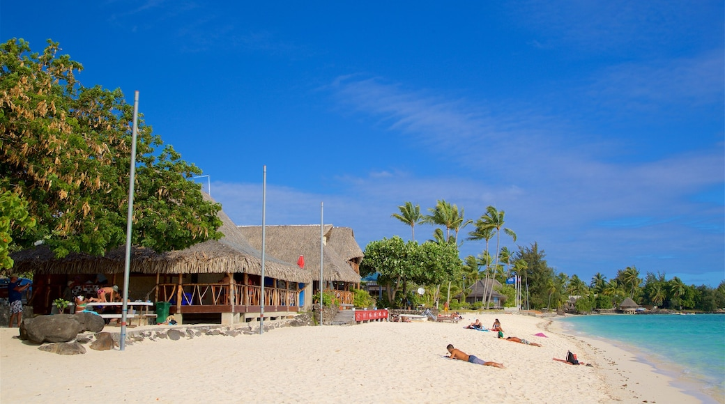 Matira Beach showing a sandy beach, general coastal views and tropical scenes