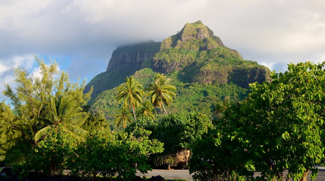 Mt. Otemanu showing mountains and tropical scenes