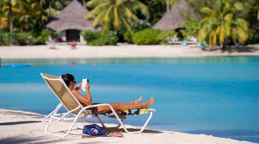 Strand des Le Meridien das einen Strand, allgemeine Küstenansicht und tropische Szenerien