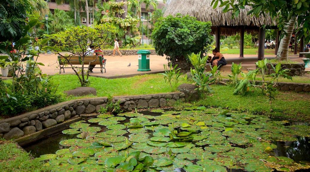 Parc Bougainville welches beinhaltet Teich und Garten