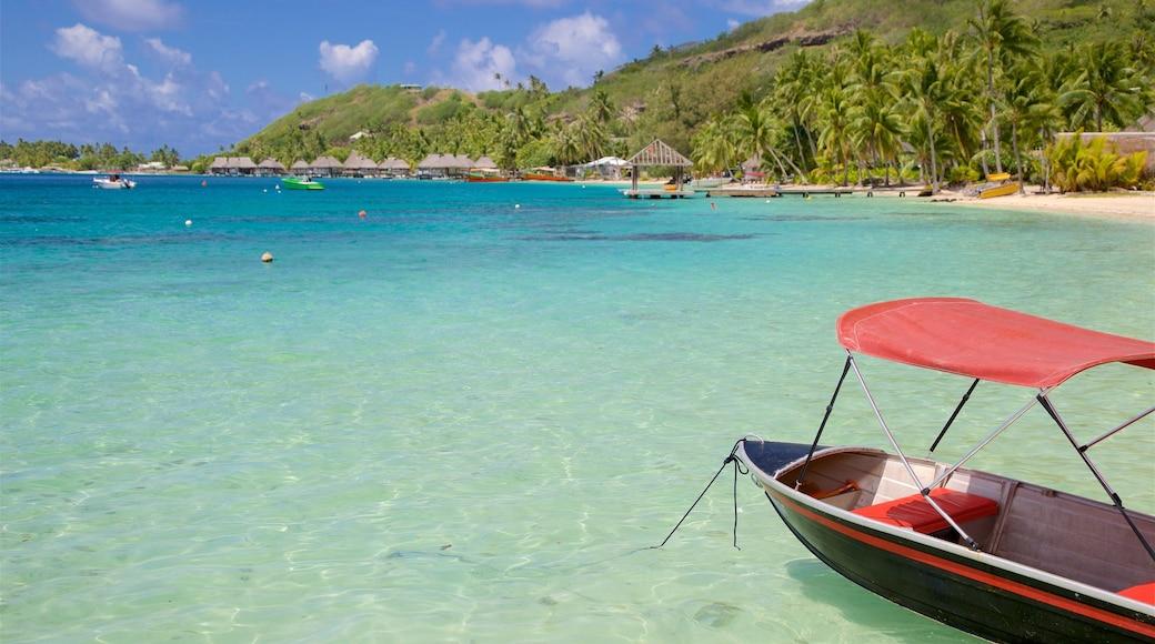 Sofitel Resort Beach qui includes vues littorales et scènes tropicales