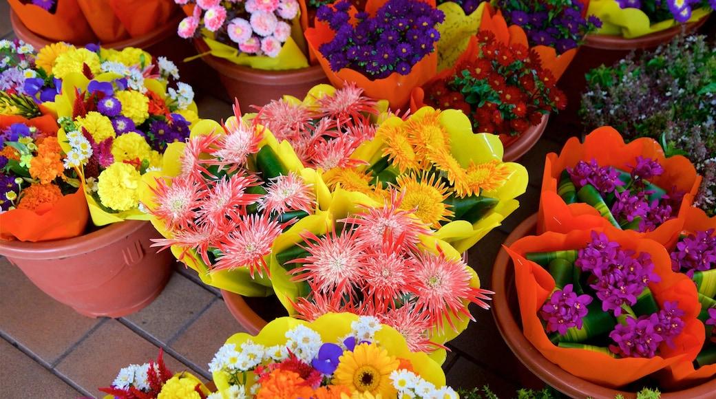 Markt von Papeete das einen Blumen