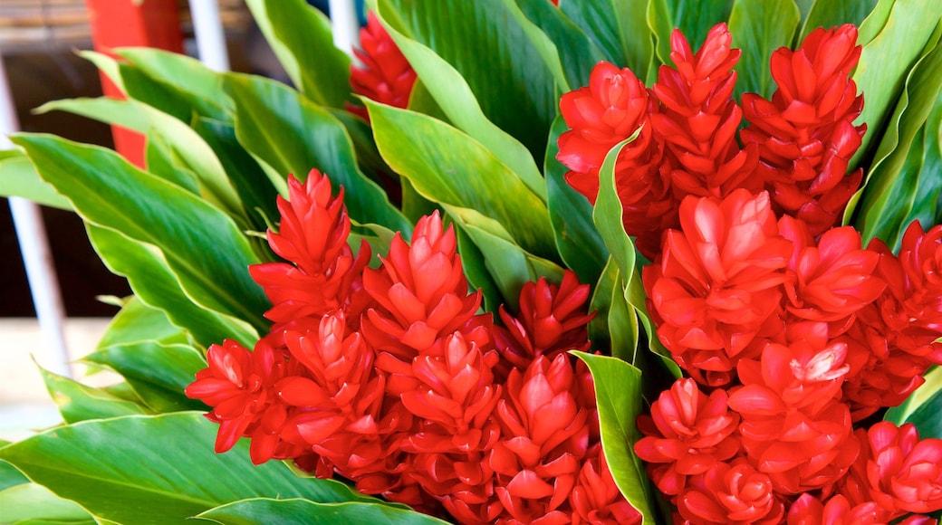 Markt von Papeete mit einem Wildblumen