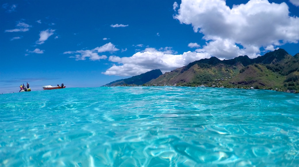 Tiahura Beach showing tropical scenes and general coastal views