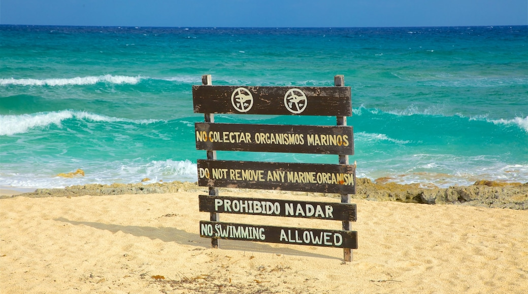 Punta Celerain Lighthouse featuring a sandy beach, surf and signage