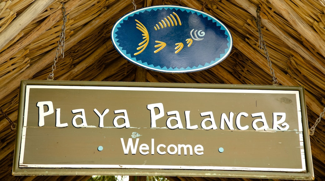 Playa Palancar which includes signage