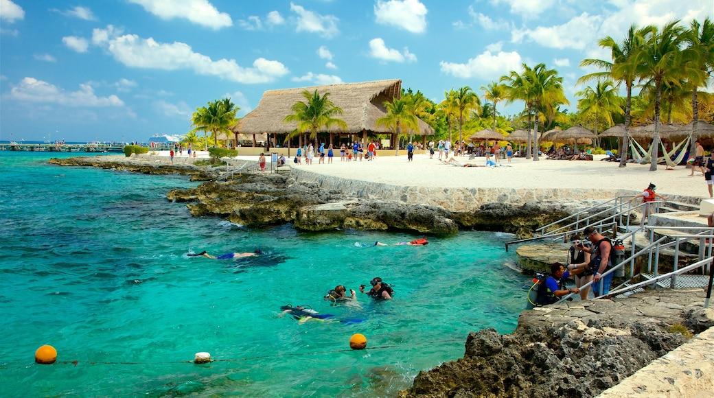 Cozumel which includes a beach, rugged coastline and general coastal views