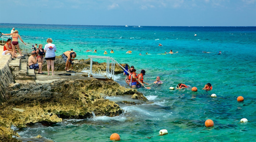 Cozumel featuring rugged coastline, general coastal views and swimming