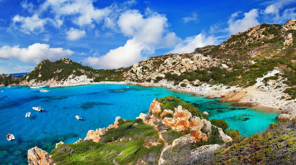La Maddalena which includes a lake or waterhole, tropical scenes and tranquil scenes