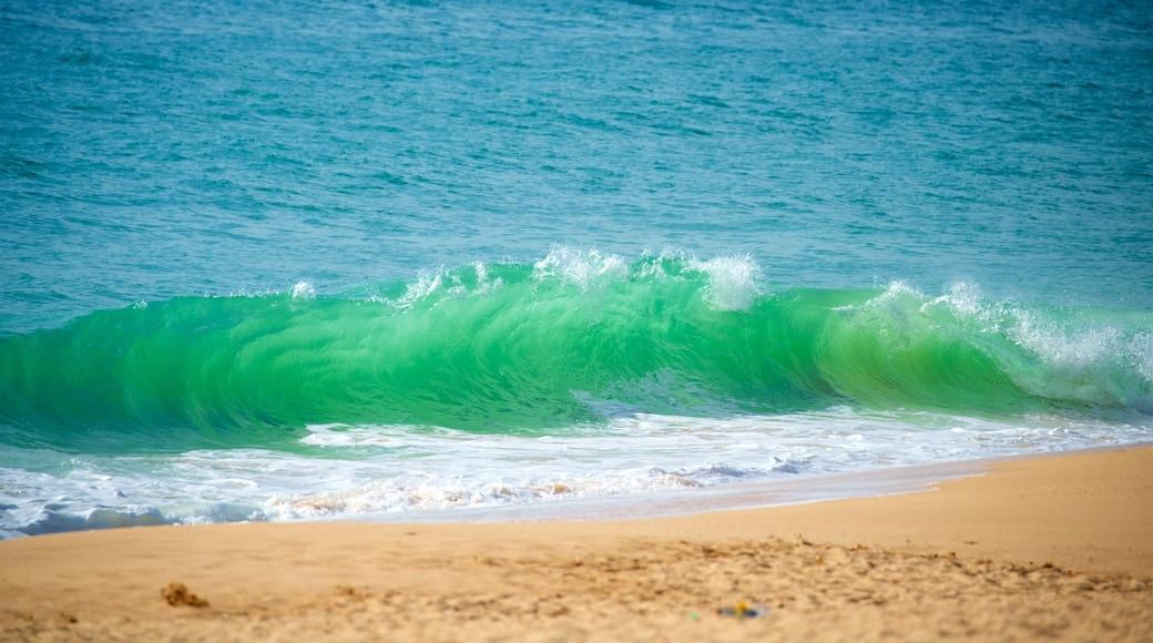 Salgados Beach which includes a beach, waves and general coastal views
