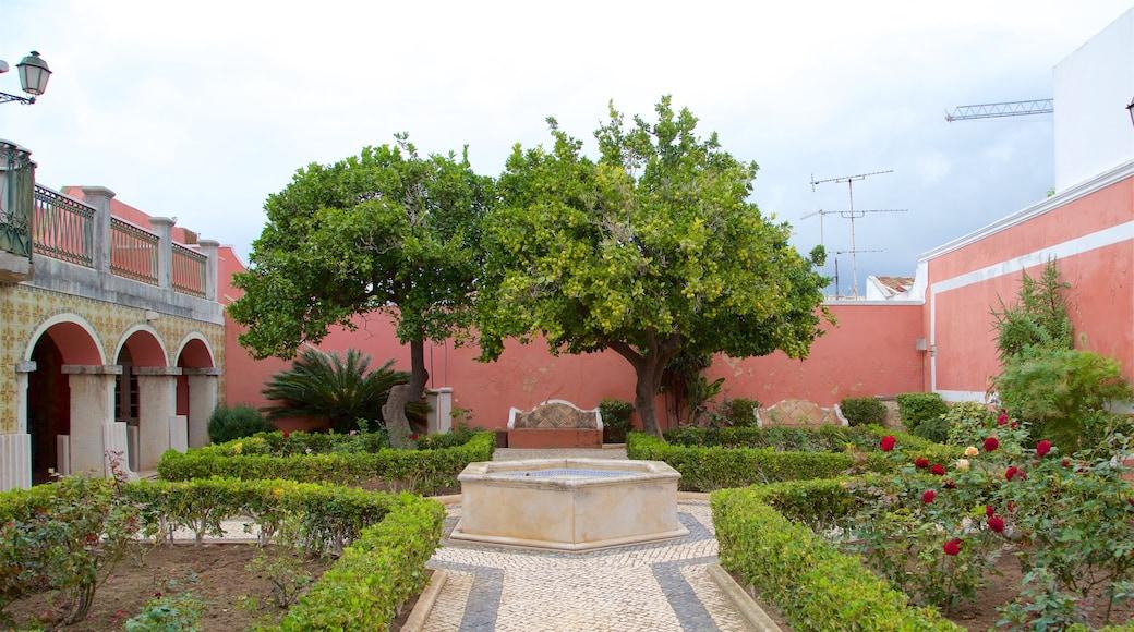 Faro Old Town inclusief wilde bloemen en een tuin