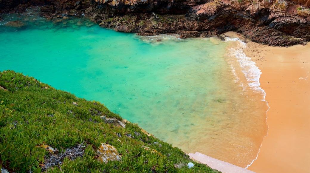 Berlenga Island che include lago o sorgente d\'acqua e spiaggia sabbiosa