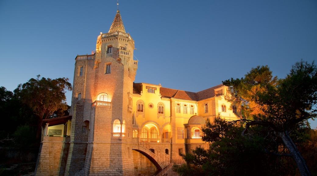 Condes de Castro Guimaraes Museum ofreciendo escenas nocturnas y elementos patrimoniales