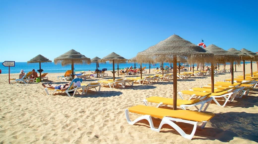 Alvor Beach showing general coastal views, a sandy beach and tropical scenes