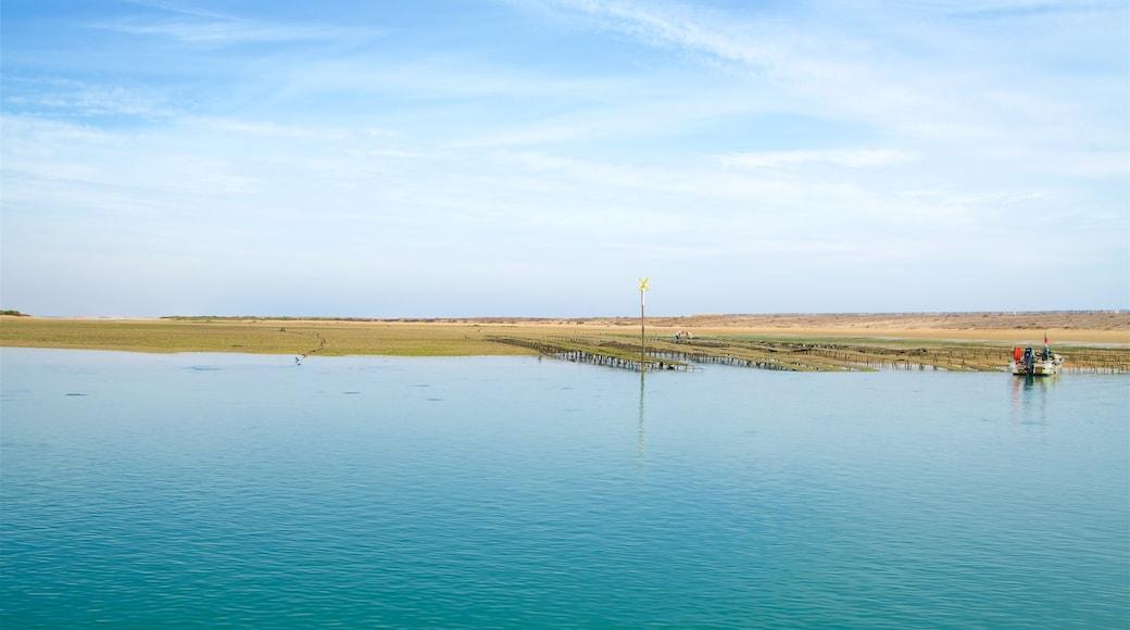 Parc naturel de Ria Formosa qui includes scènes tranquilles et lac ou étang