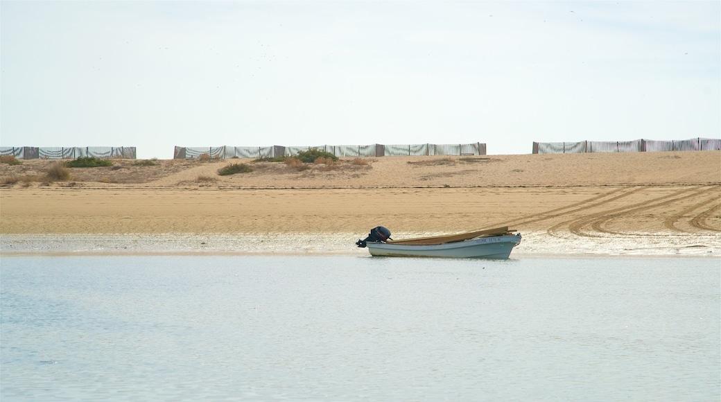 Parc naturel de Ria Formosa qui includes plage de sable et vues littorales