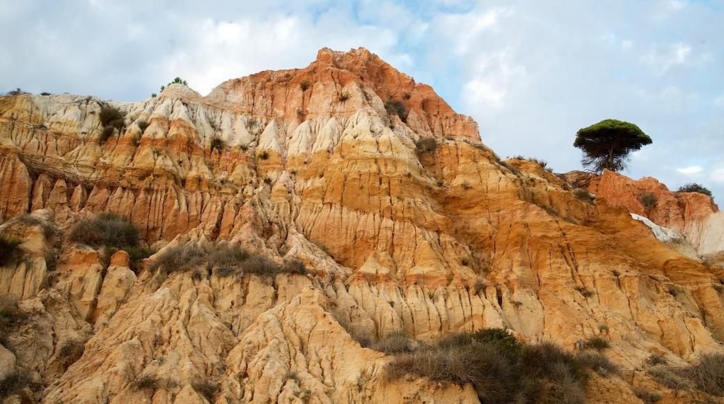 Falesia Beach featuring rocky coastline