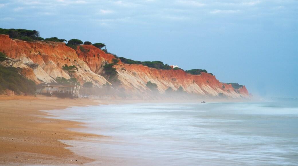 Falesia Beach featuring a beach, rugged coastline and general coastal views