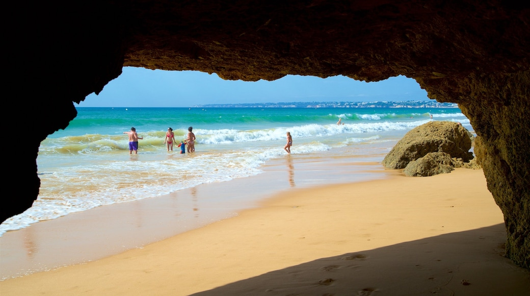 Gale Beach featuring a sandy beach, general coastal views and swimming