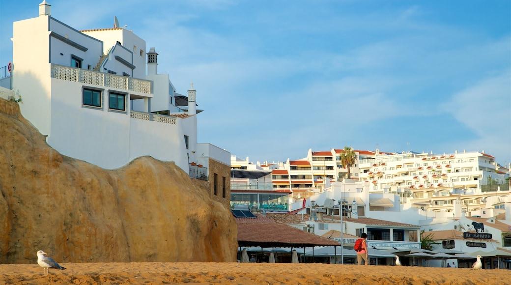 Fisherman\'s Beach featuring a sandy beach, general coastal views and a coastal town