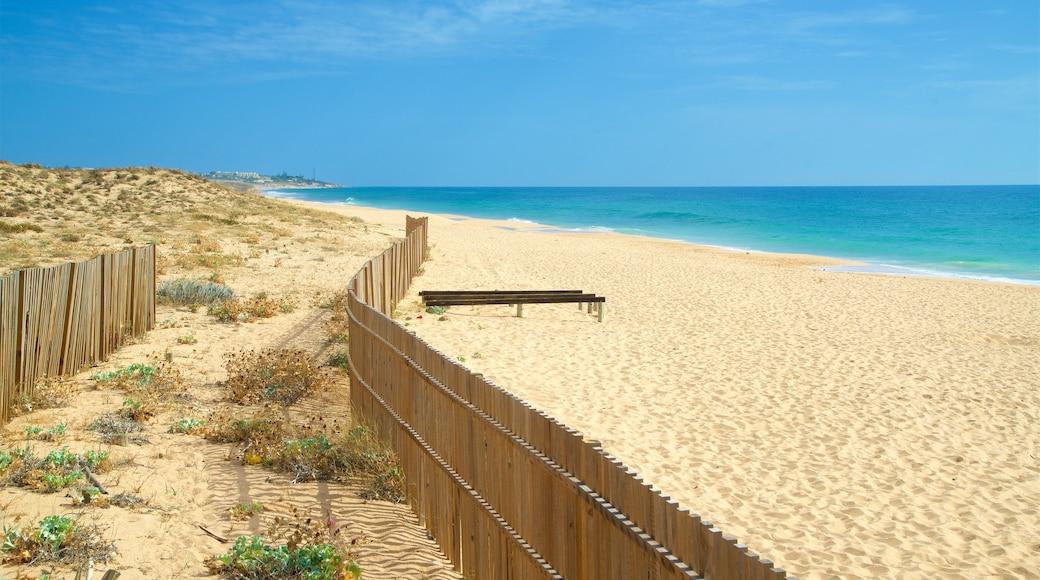 Salgados Beach which includes general coastal views and a beach