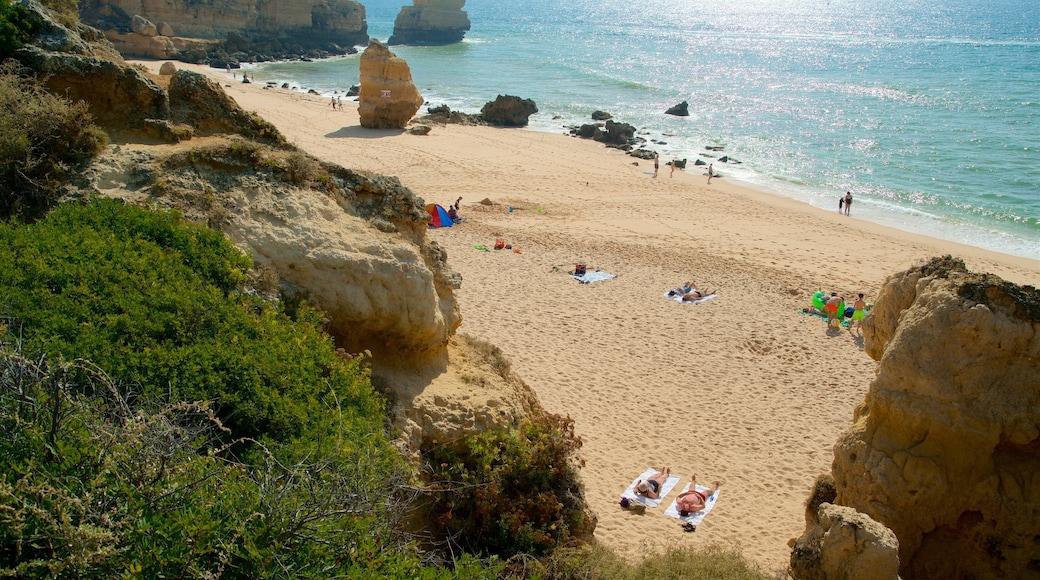 Coelha Beach featuring a beach, general coastal views and rocky coastline