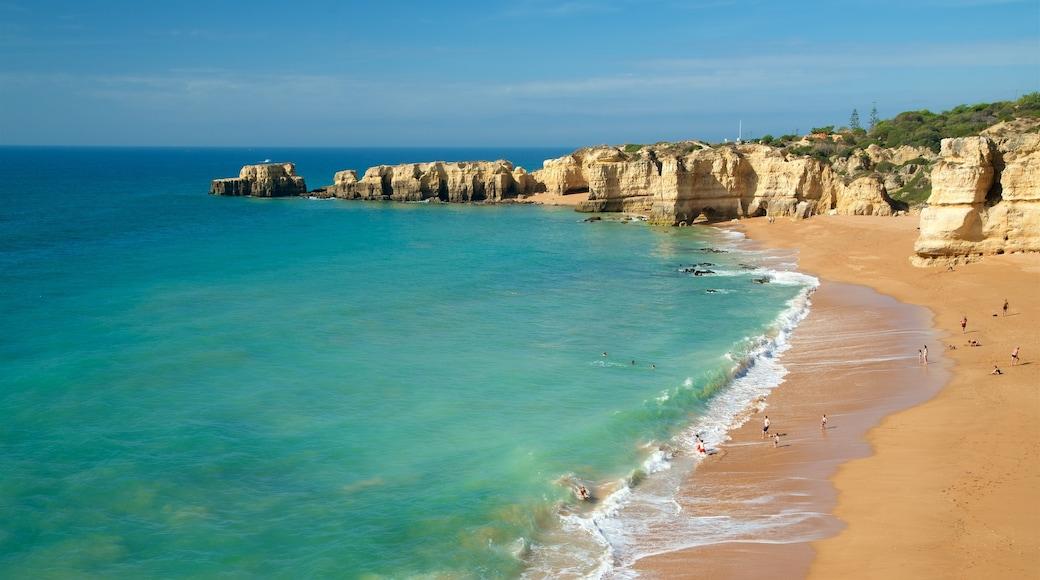 Coelha Beach which includes a sandy beach, rugged coastline and general coastal views