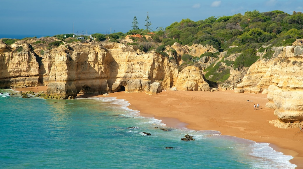 Coelha Beach which includes general coastal views, rocky coastline and a sandy beach