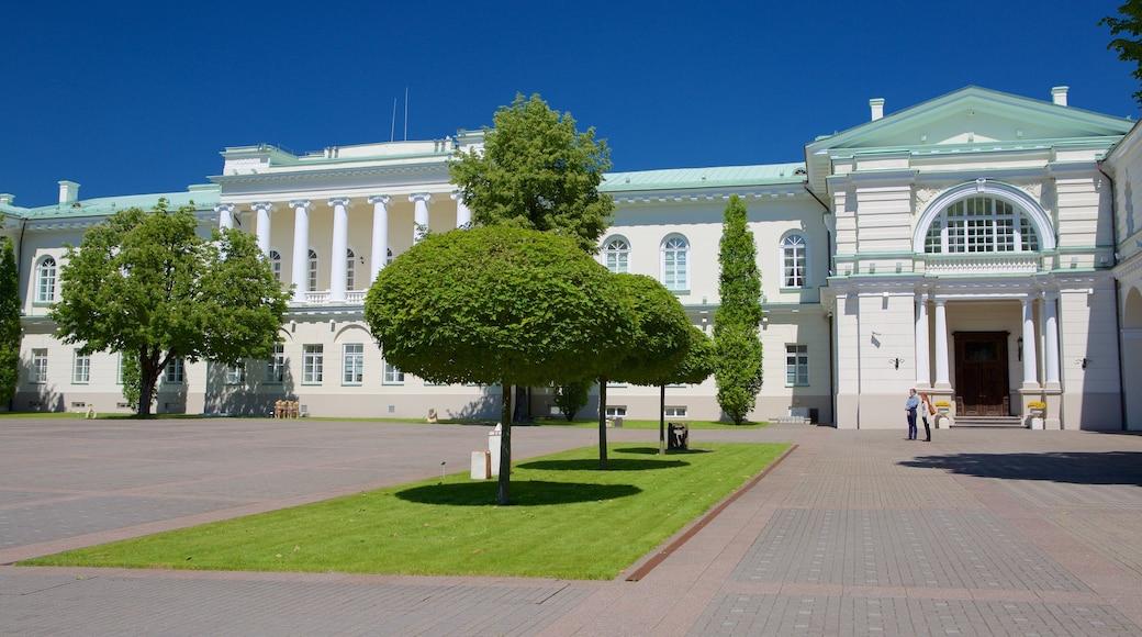 總統府 其中包括 廣場 和 公園