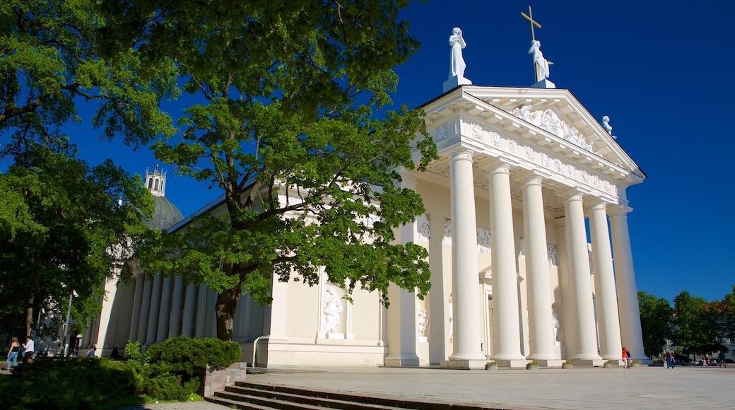 Cattedrale di Vilnius caratteristiche di oggetti d\'epoca, piazza e chiesa o cattedrale