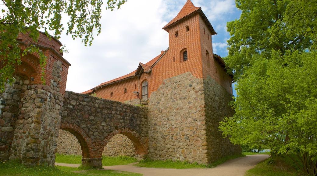 Castello dell\'isola Trakai che include oggetti d\'epoca
