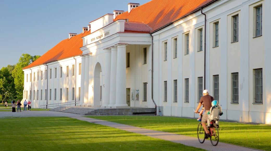 Liettuan kansallismuseo featuring perintökohteet, puutarha ja pyöräily
