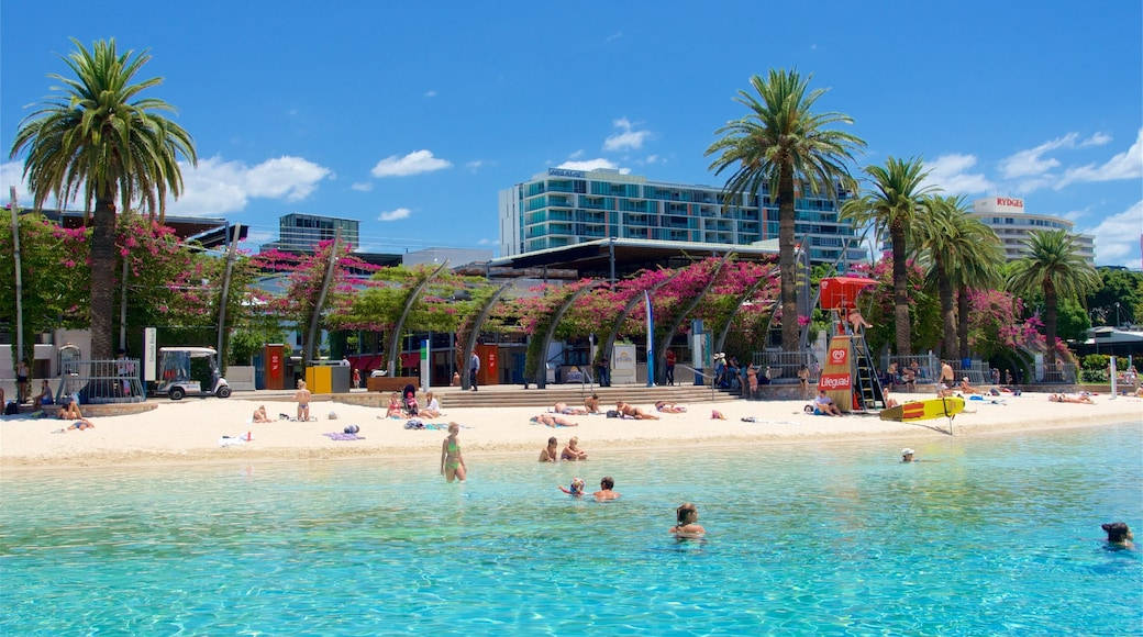 Southbank Parklands which includes general coastal views, wild flowers and a city