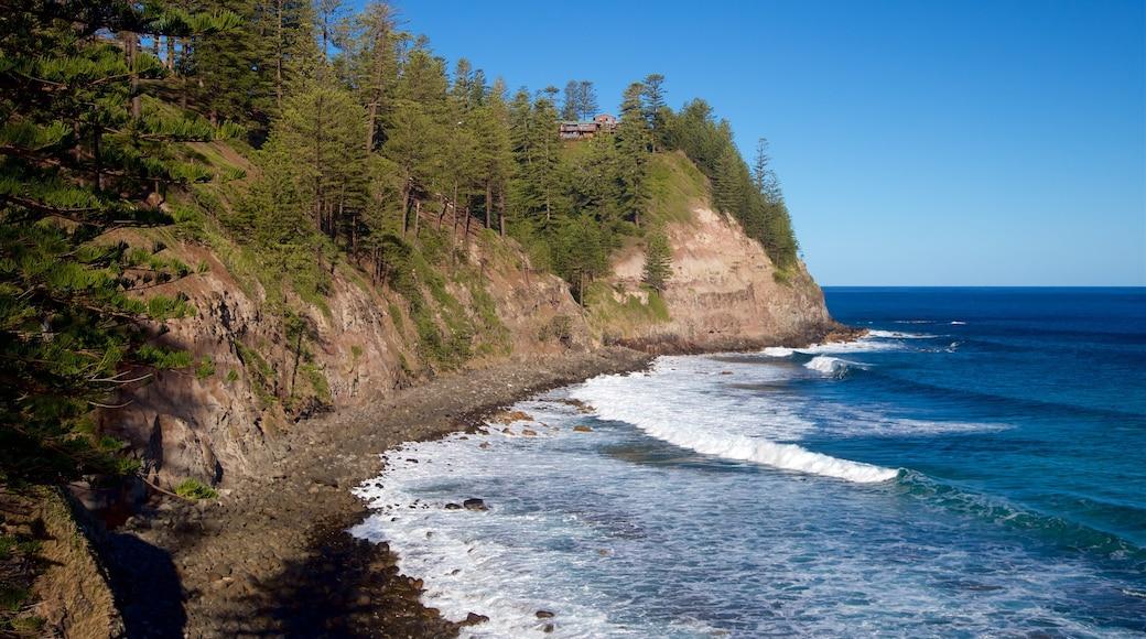 Norfolk Island showing rugged coastline and general coastal views