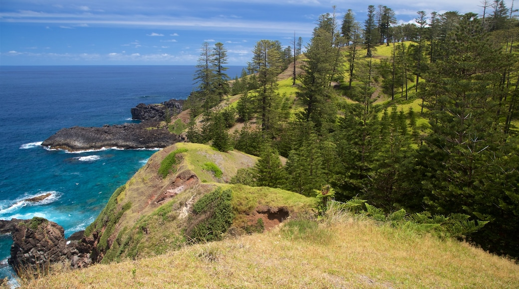 Norfolk Island which includes rocky coastline and general coastal views