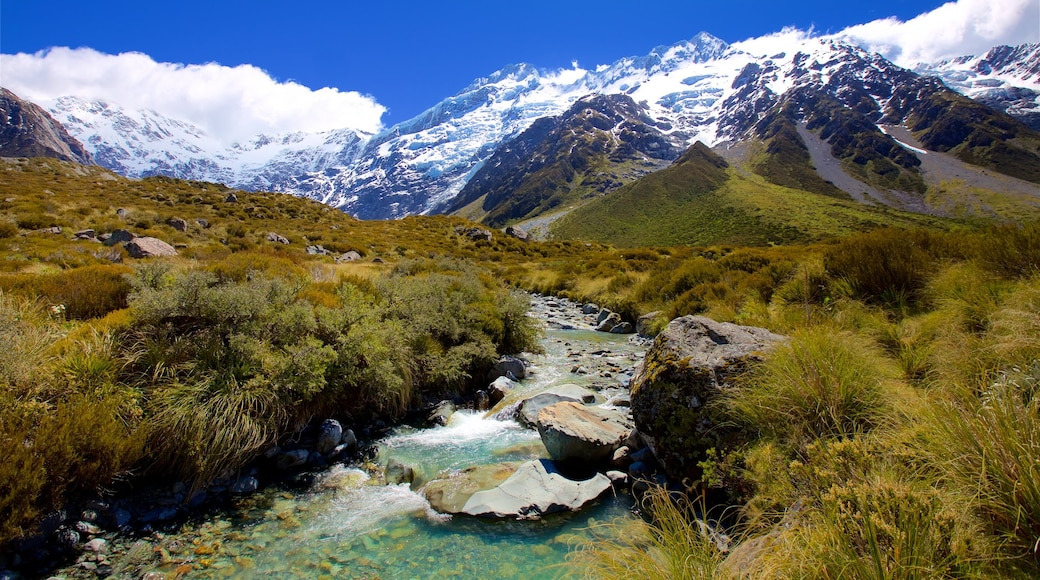 Mount Cook National Park showing tranquil scenes, mountains and a river or creek