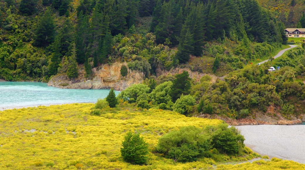 Rakaia Gorge which includes a lake or waterhole and tranquil scenes