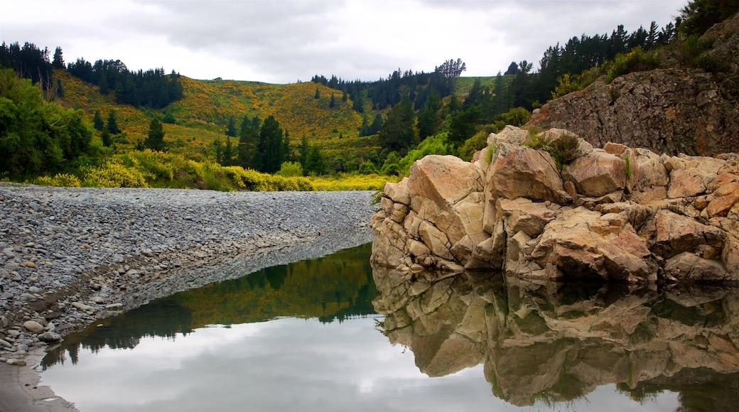 Rakaia Gorge which includes tranquil scenes and a lake or waterhole