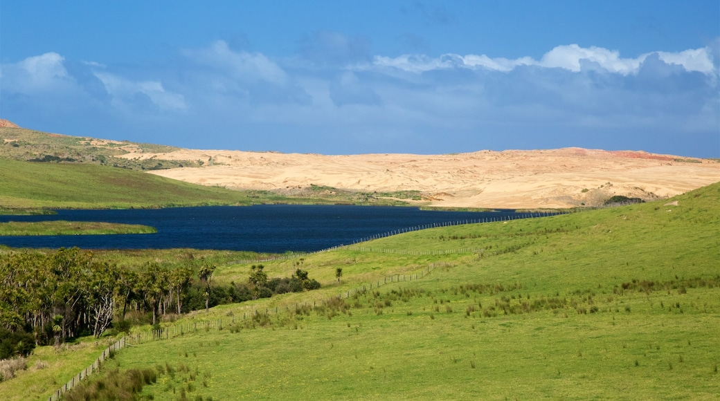 Northland showing a lake or waterhole and tranquil scenes